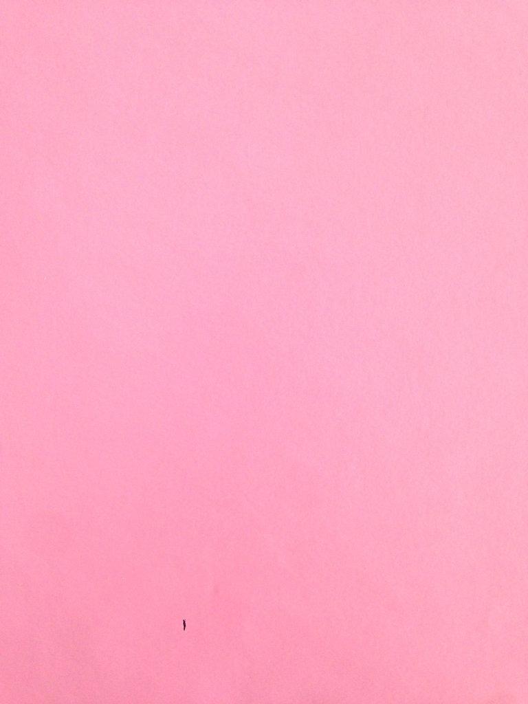 wachstuch tischdecke meterware rolle uni 210 pink. Black Bedroom Furniture Sets. Home Design Ideas